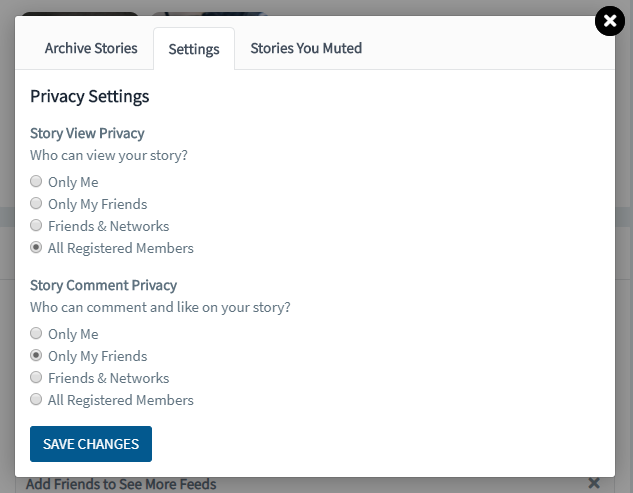 Stories Feature in Website