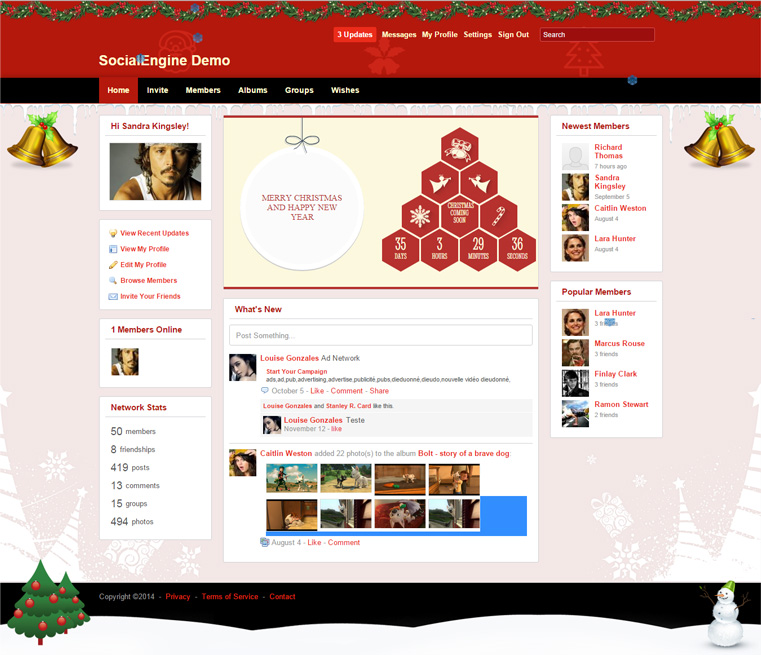 Christmas and New Year Theme