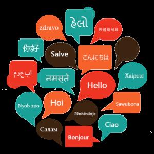 Delightful Multiple Language Translator Plugin