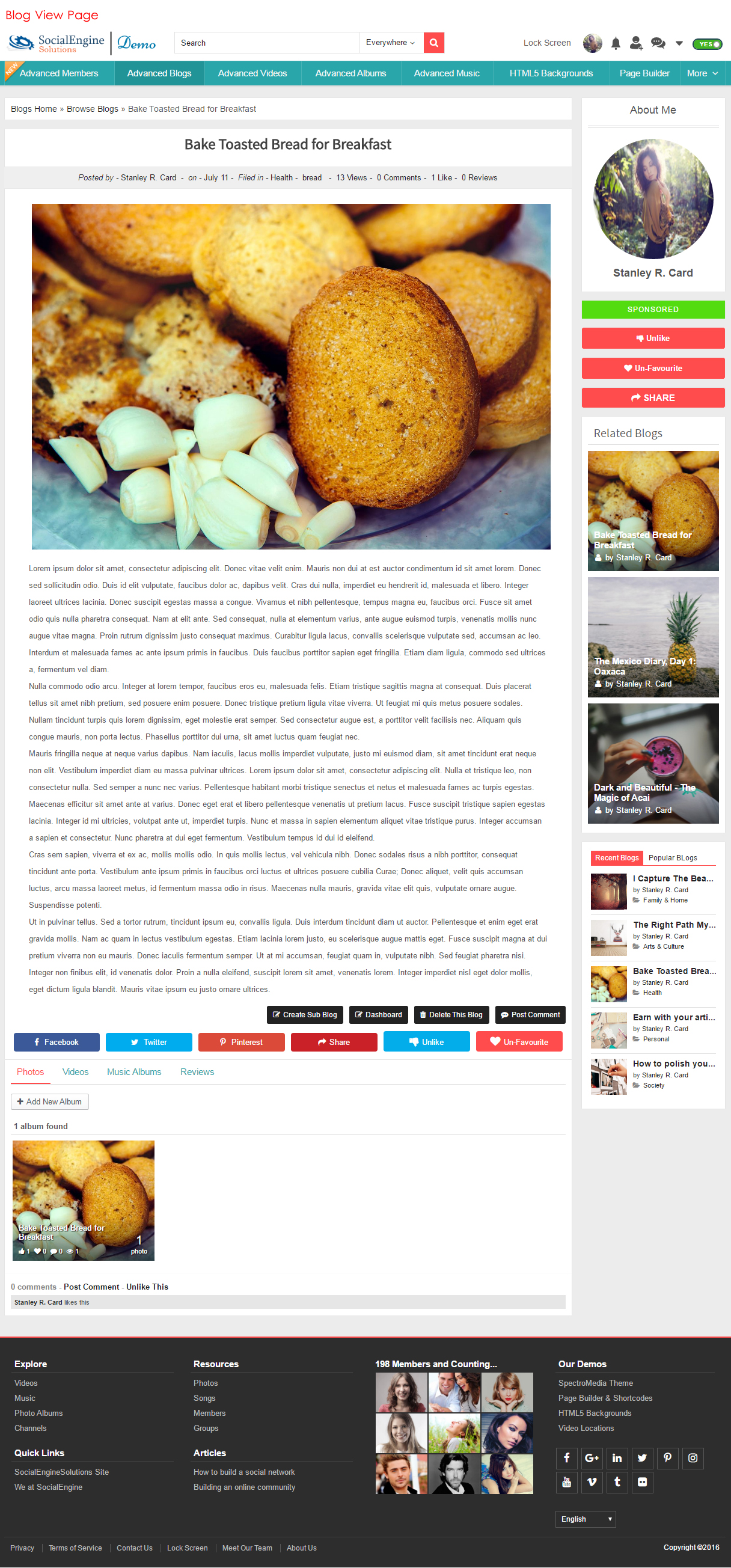 Blog View Page