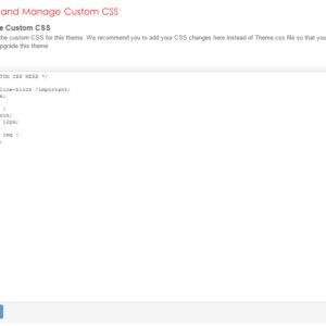 Admin: Add and Manage Custom CSS