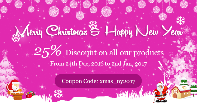 Christmas & New Year Discount